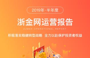 2019年半年运营报告